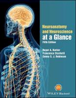 Neuroanatomy and Neuroscience at a Glance 5th Edition