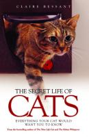 Secret Life of Cats: Everything Your Cat Would Want You to Know