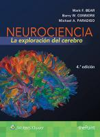 Neurociencia. La exploracion del cerebro 4th edition